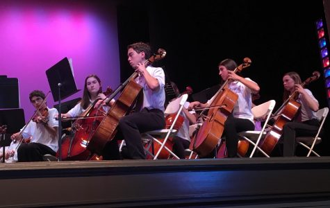 From violinists to drummers, musicians orchestrate success